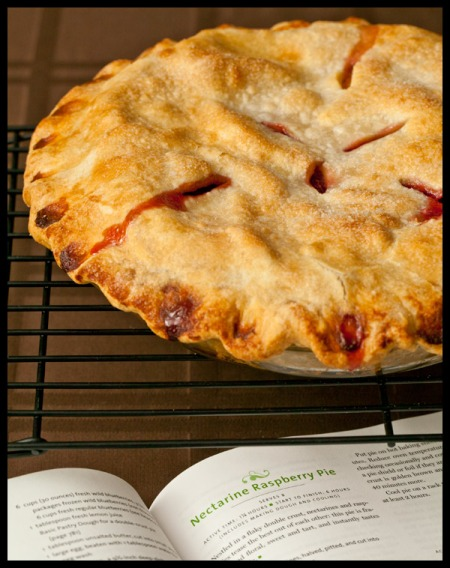 Nectarine raspberry pie